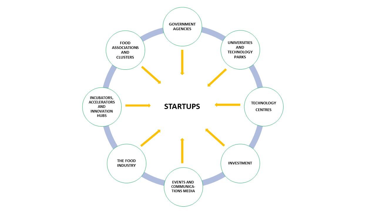 Startup Forum Network